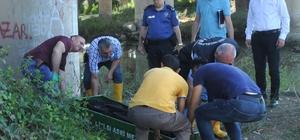 Kızılırmak'ta erkek cesedi bulundu