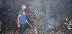 Midyat'ta korkutan orman yangını Yaklaşık 500 dönümlük alanı küle çeviren orman yangını devam ediyor