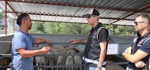 Bolu hayvan pazarında sahte para denetimi yapıldı