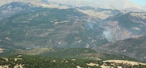 """Tunceli'de ormanlık alandaki örtü altı yangını Milletvekili Erol: """"Korkulacak bir durum yok"""""""