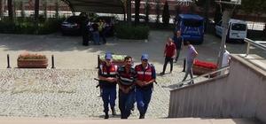 Ortalığı savaş alanına çeviren kazaya neden olduğu iddia edilen tırın sürücüsü tutuklandı
