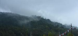 Sinop'ta sağanak Aniden bastıran yağmur hayatı olumsuz etkiledi