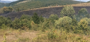 Fındıklıkta çıkan yangın itfaiye ekiplerince söndürüldü