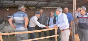 Başkan Acar kurban pazarını ziyaret etti
