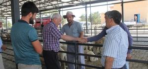 Başkan Karayol Hayvan Pazarını ziyaret etti