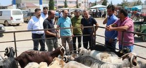 Başkan Özaltun, hayvan pazarını ziyaret etti