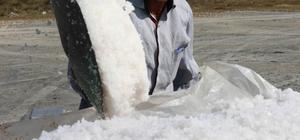 """(Özel) En 'Tuzlu' Hayat 62 yaşındaki Seyfi Turan ilerleyen yaşına rağmen Tuzla Gölü'nden tuz çıkarmaya devam ediyor 12 yaşından beri gölden tuz çıkaran Seyfi Turan, """"Eskisi gibi satılmadığı için bu işe pek rağbet yok"""""""