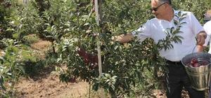 """Başkan Öztürk: """"Yahyalı'da elma üretimi modernleşmeli"""""""