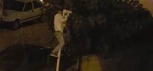 Direğe tırmanıp güvenlik kamerasını çaldı Hatay'da güvenlik kamerasını çalan hırsız cep telefonu kamerasıyla yakalandı