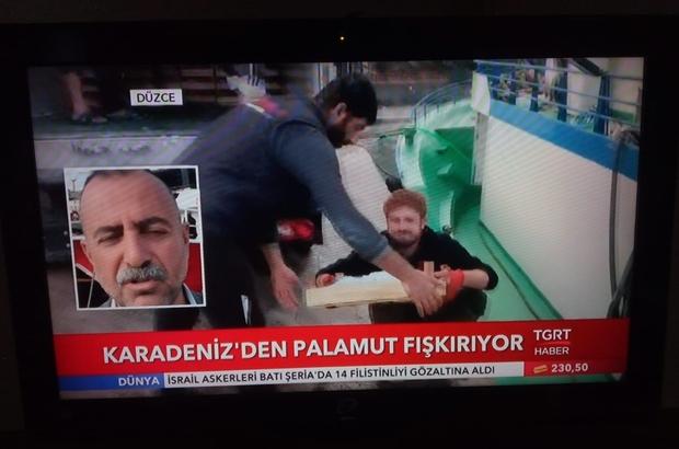 Vali Balkanlıoğlu Pamukova'da incelemelerde bulundu