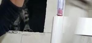 Aksaray itfaiyesinden kedi kurtarma operasyonu