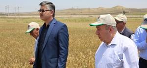 """Eskişehir'de en yeni bitki çeşitleri çiftçilere tanıtıldı İl Tarım ve Orman Müdürü Erkan Alkan; """"Yapılan deneme ve demonstrasyonlar sayesinde çiftçilerimizin birim alandan elde ettikleri verim ile birlikte gelirleri de artacak"""""""
