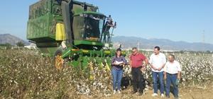 Aydın'da pamuk hasat kontrolleri devam ediyor