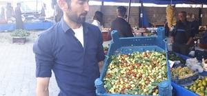 Şifa kaynağı Hünnap pazara indi