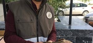 Jandarmanın yaralı bulduğu Şahin tedavi altına alındı