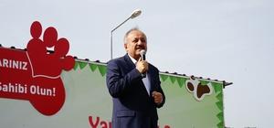 Şarkıcı Elnur Huseynov, Kastamonu'da sokak hayvanları yararına şarkı söyledi Kastamonu'da sokak hayvanları yararına konser düzenlendi