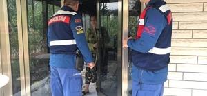 Balıkesir'de Hırsız Kapan operasyonunda 117 kişi yakalandı