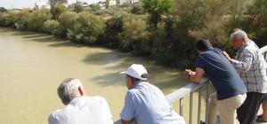Göksu Nehri'ne atlayan Feride'yi arama çalışmaları sürüyor