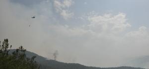 Hatay'daki orman yangını
