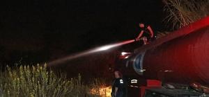 Mahalleliyi tehdit eden sazlık yangını kısa sürede söndürüldü Yangın esansında yerde bulunan oyuncak kobra yılanı mahallelinin korkusunu ikiye katladı