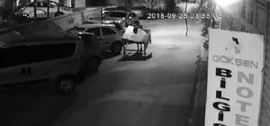 """Balık tezgahını çaldı, """"Hurda sandım"""" dedi Adana'da balık tezgahını çalan 1 kişi güvenlik kamerası tarafından görüntülendi Gözaltına alınan zanlı, işsiz kaldığını balık tezgahını da hurda kullanılmaz olduğunu düşünerek aldığını 144 liraya satarak ihtiyaçlarını karşıladığını söyledi"""