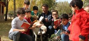 """Erzurum'da kuzulu çocuk kütüphanesi Kitap kurdu miniklerin sevimli dostu """"Kartopu"""""""