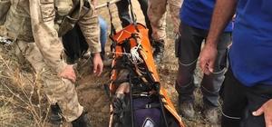 40 kişi kaybolan hastayı bulmak için seferber oldu