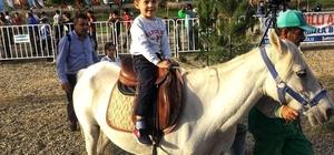 Şahinbey Belediyesi çocukları midilli atlarıyla buluşturdu