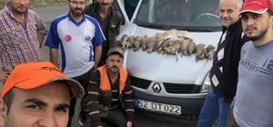 Fatsalı avcılar sezona hızlı başladı