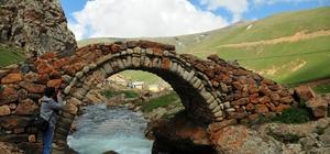 """Gümüşhane'de 557 yıllık Taşköprü onarılacak Gümüşhane merkeze bağlı Arslanca köyü sınırlarında yer alan Balahor deresi üzerindeki tarihi köprünün selde yıkılmasının ardından Gümüşhane Valiliği Taşköprü Yaylası'ndaki tarihi köprünün aynı akıbete uğramaması için harekete geçti Vali Okay Memiş: """"Müdahale edilmezse yıkılabilir"""""""