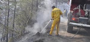 """Amanoslardaki orman yangınını soğutma çalışması sürüyor Ketmen: """"Grip gibi zor ve inatçı bir yangındı"""""""