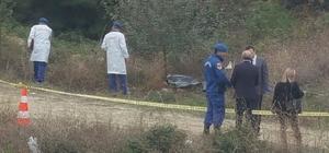 Bilecik'te kan dondurucu olay, 1 ölü 1 ağır yaralı Zeytin bahçesinde bulundular