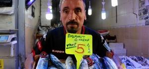 Samsun'da palamut 5 lira Palamut herkesin yüzünü güldürdü