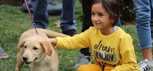 """Barınaktaki yavru köpekler yeni yuvalarına kavuştu 4'üncü Pati Festivali Eskişehir'de gerçekleştirildi Katılımcılar, """"Satın Alma Sahiplen"""" sloganıyla düzenlenen etkinlikte yeni dostlarına kavuşmanın büyük mutluluğunu yaşadılar"""
