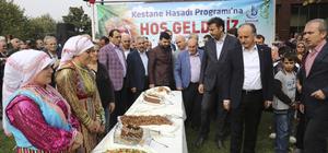 "İstanbul'da ""Kestane Festivali"""