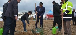 """Sinop'ta """"Fidanlar, Fidanlarla Büyüyor"""" etkinliği"""