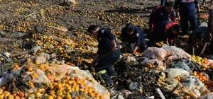 Narenciye posası altında can pazarı Adana'da kamyonla üzerine narenciye posası dökülen 15 yaşındaki çocuk, tarım işçileri ve Cankur ekiplerinin çalışması sonucu yaralı olarak kurtarıldı