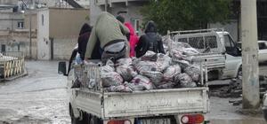 Şanlıurfa'da kömür dağıtımına başlandı