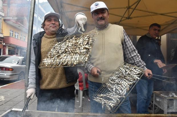Hamsi Festivali'nde 2,5 Ton Hamsi Tüketildi ayancık ile ilgili görsel sonucu
