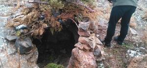 Siirt'te kaçak avcıların kurduğu tuzaklar yıkıldı