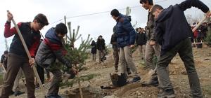 """Elazığ'da """"Ağacımla büyüyorum, kendi seramda üretiyorum' projesi"""