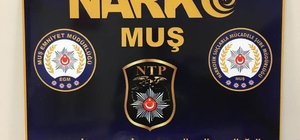 Muş'ta uyuşturucu satıcılarına operasyon