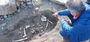 Barajda sular çekildi, kemik parçaları ortaya çıktı Tokat'ın Almus ilçesinde bulunan baraj gölünde su seviyesinin düşmesi ile birlikte mezarlık olduğu değerlendirilen alan defineciler tarafından adeta talan edilirken, etrafa kemik parçaları yayıldı