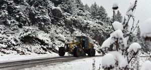 Adana'da 7 ilçede karla mücadele başladı