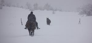 Bingöl'de 281 köye kar nedeniyle ulaşım sağlanamıyor Karla mücadele ekipleri, yolların açılması için aralıksız çalışma yapıyor