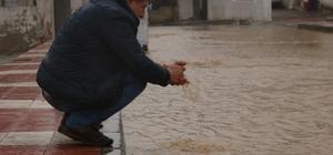 Manisa'da sulama kanalları taştı, evler su altında kaldı Dünden bu yana süren şiddetli sağanak, Manisa'da hayatı olumsuz etkilerken, sulama kanalları taştı, yollarsa göle döndü Tarım arazileri sulara gömüldü