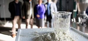 Türkiye'nin ilk 'yerli ağız sütü tozu' üretildi Buzağı ölümlerini engelleyecek projede ilk üretim yapıldı