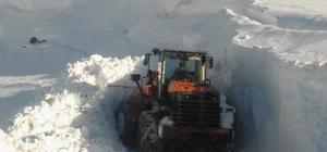 Sason'da kardan kapanan 49 köy yolunun 20'si ulaşıma açıldı Kar kalınlığının 2 metreye ulaştığı bölgede çalışmalar sürüyor