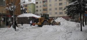 Bingöl'de 650 kamyon kar şehir dışına taşındı