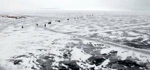 Çıldır Gölü'nde buzlarla görsel şölen Yüzeyi tamamen buzla kaplanan Çıldır Gölü, havadan görüntülendi Buz tutan Çıldır Gölünde balık ağları gerildi